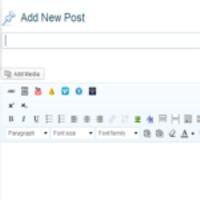 Visual Editor in WordPress